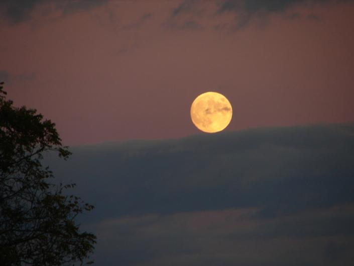 volle maan meditatie Den Haag