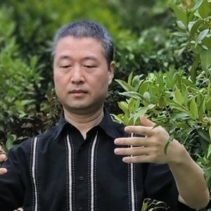 Qigong teacher Ning